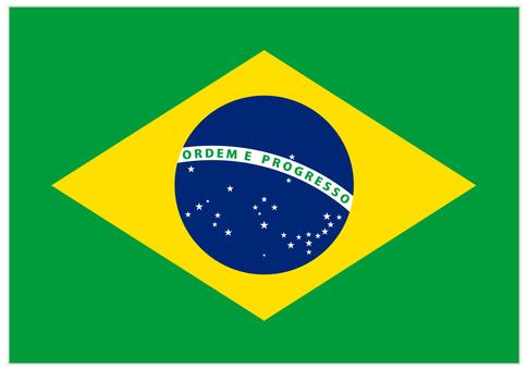 국기 _ 브라질