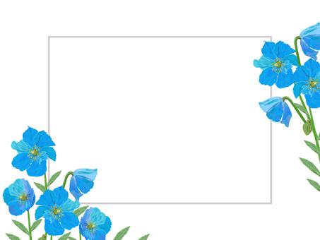 罌粟花框架