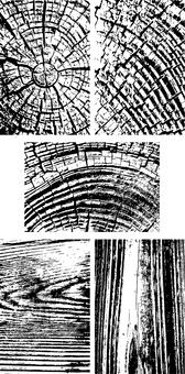 Woodgraining texture 01