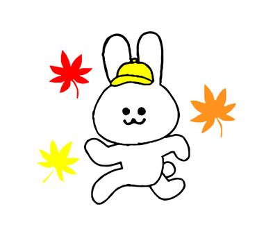 토끼 운동의 가을 (간단)
