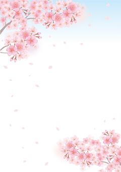 벚꽃의 프레임 30