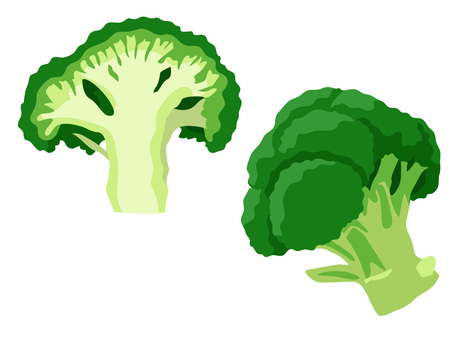 Ingredients _ vegetables _ broccoli _ no line