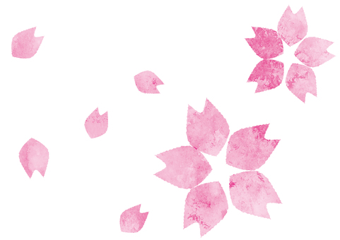 Cherry petal petals one point illustration material