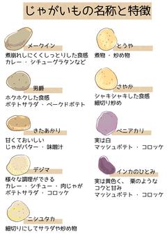 ジャガイモの種類