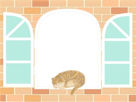 Bussakawa cat sleeping at the window side