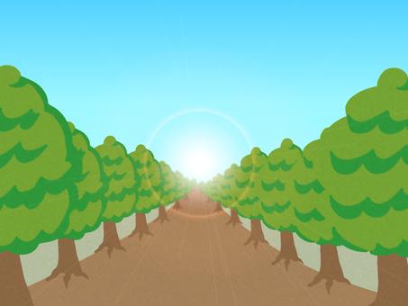 Green tree lane (light)