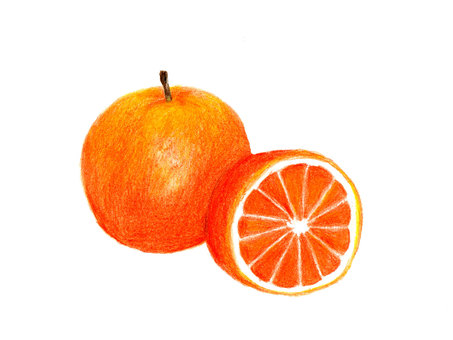 Orange (color pencil drawing)