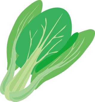 Food Series Vegetable Ching Gen