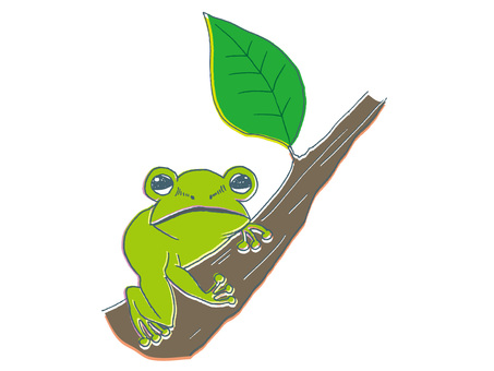 Branches and frogs