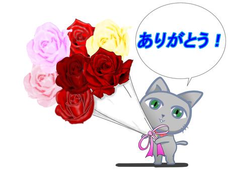 """一隻帶著花束的貓,""""謝謝你"""""""