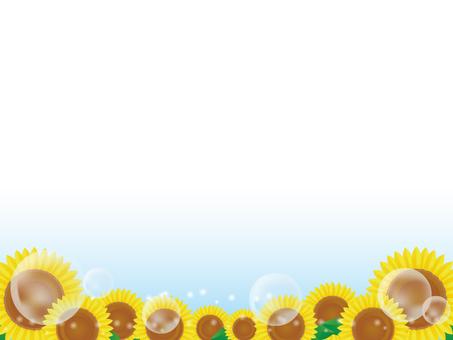 Sunflower background 3