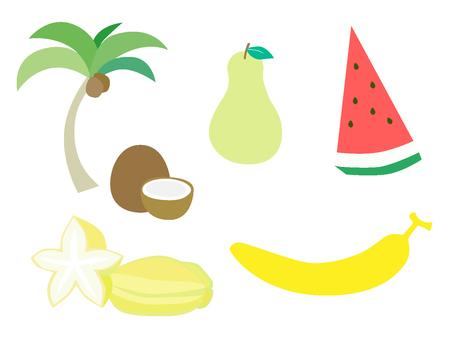 남국 과일