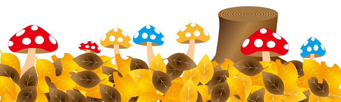 낙엽과 독버섯 2