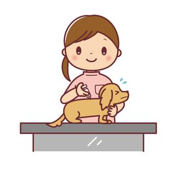 女性獣医さんと注射をされる犬