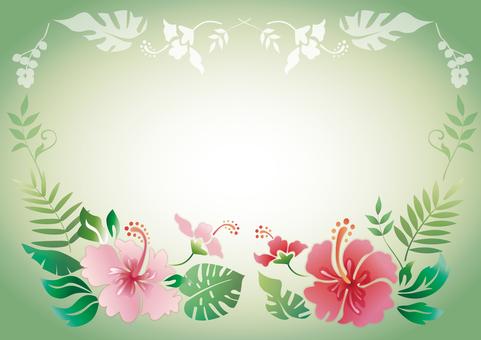 Hibiscus Frame 2