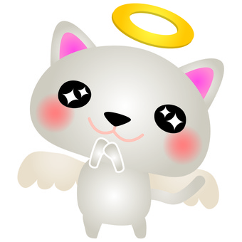 White Cat Angel
