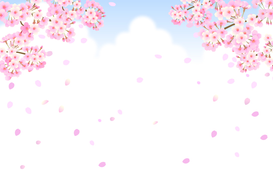 Spring background material Sakura and sky