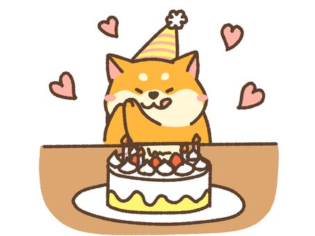 Cake shiba