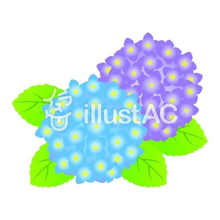 free cliparts hydrangea flower green 99658 illustac rh en ac illust com blue hydrangea clipart free