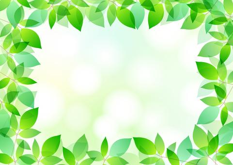 Fresh green material 11