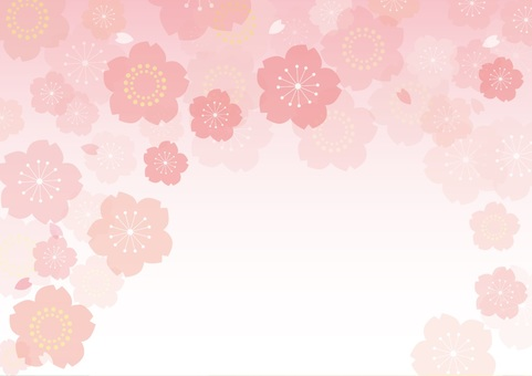 Cherry background 9