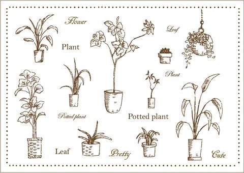 Plant foliage hand-painted leaf set