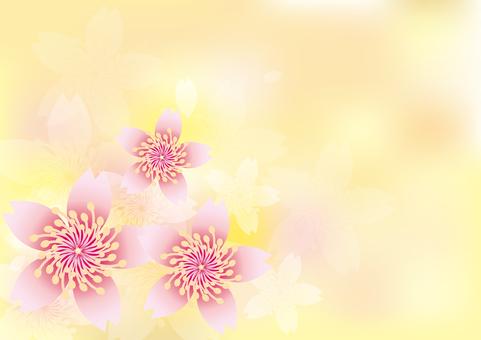 Splendid flowers 232