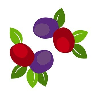 Red and purple seeds