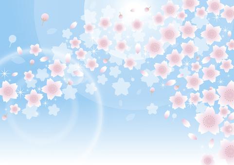 벚꽃 눈보라 그 3