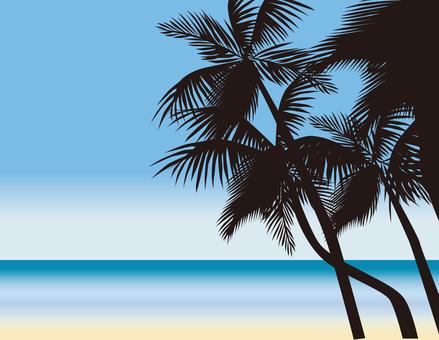 Palm tree noon 4