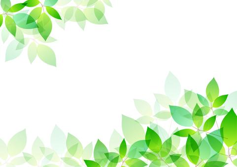 Fresh green material 21