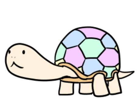 화려한 거북이