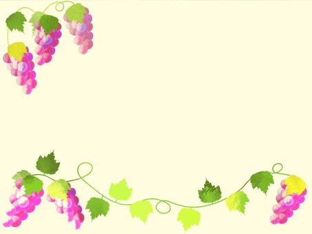 Grape frame 4.2