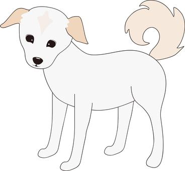 Dog (Mixed dog 1)