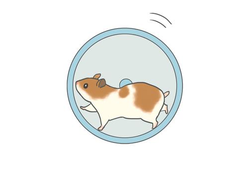 Hamster driving wheel
