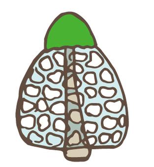 Mushroom-35