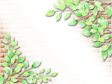 Fresh green and brick ★ 0058-GR