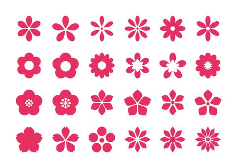 扁平的花朵