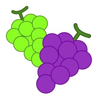 Grapes (2 species)