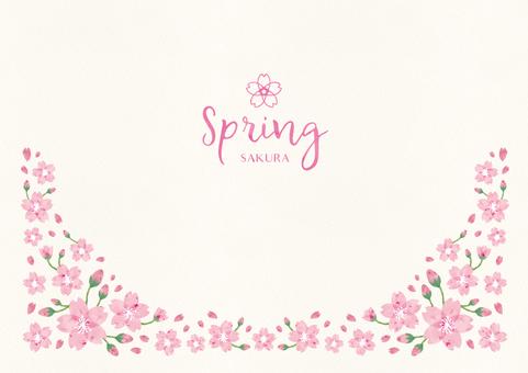Spring background frame 010 Sakura watercolor
