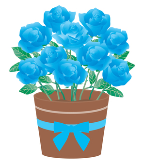 Rose_potted plant 01 blue