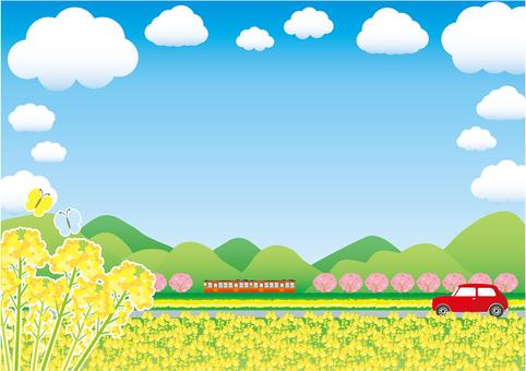 봄의 시골 유채 꽃밭과 선로의 벚꽃 프레임