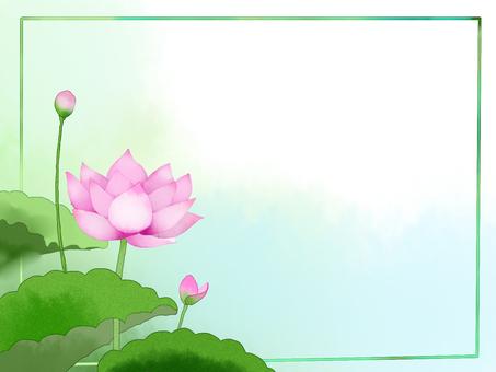 Lotus (pink)