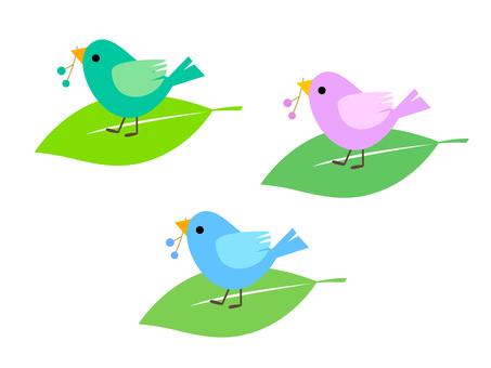 10. 작은 새들 2