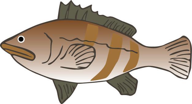 Fish Fishing Qua La