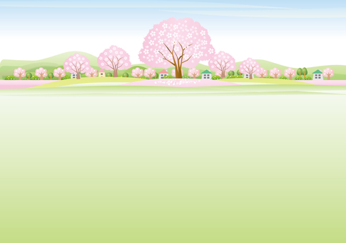 Scenery of cherry blossoms and ohanami
