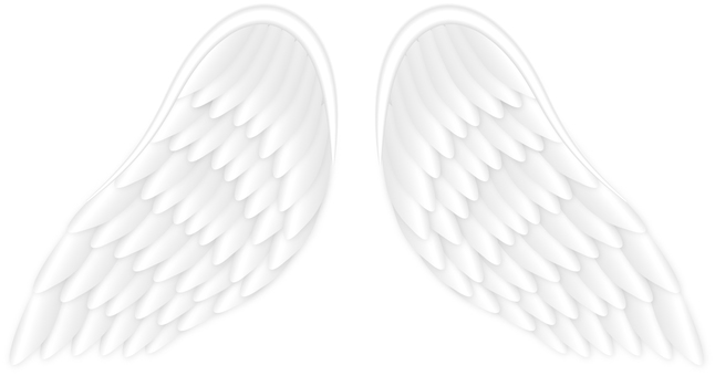 Angel's Wings / AngelWing