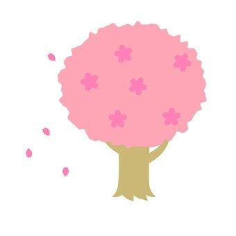 벚꽃 나무