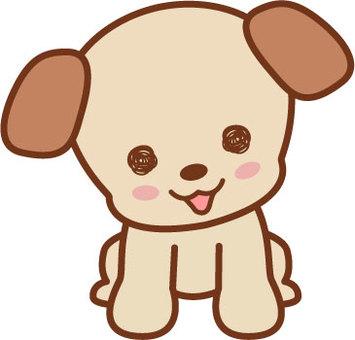 Puppy is cute!