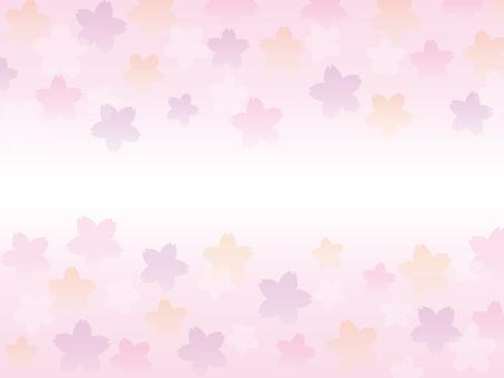 Background - Sakura